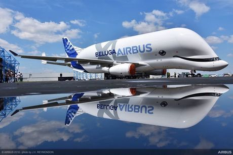 BelugaXL-roll-out.jpg